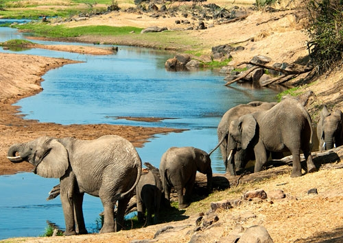 Tanzania to Inject 300bn For Southern Tourism Circuit Development